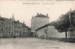 43 St Saint Didier Le Champ De Foire - Saint Didier En Velay