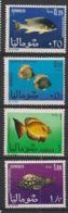 Somalia - 1967 - N°Yv. 76 à 79 - Faune / Poissons - Neuf Luxe ** / MNH / Postfrisch - Somalië (1960-...)
