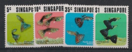 Singapore - 1974 - N°Yv. 205 à 208 - Poissons / Fishes - Neuf Luxe ** / MNH / Postfrisch - Singapore (1959-...)