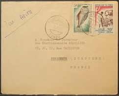 Congo - Cover To France 1965 Fish Education Point-Noire - FDC