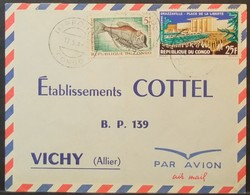 Congo - Cover To France 1966 Fish Place De La Liberté Impfondo - FDC
