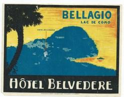 Luggage Labels Label Hôtel - Etiquettes - Bellagio _ Hôtel Belvédère - Non Classificati