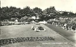 REAL PHOTOGRAPHIC POSTCARD - SHERBURN PARK - CONSETT - NORTH WEST DURHAM - Durham