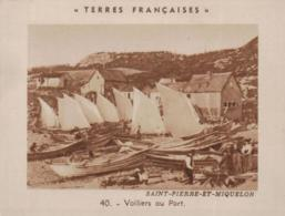 CHROMO TERRES FRANCAISES @ ST PIERRE MIQUELON @ - Saint-Pierre-et-Miquelon
