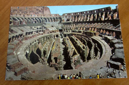 ROMA Colosseo  Cartolina 1982 Viaggiata - Colisée