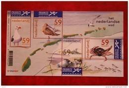 Het Nederlandse Wad Deel 2; NVPH 2171 (Mi Block 78); 2003 POSTFRIS / MNH ** NEDERLAND / NIEDERLANDE / NETHERLANDS - Unused Stamps