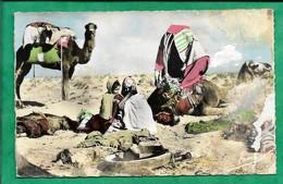 Scènes Et Types 50  Campement De Nomades 2scans Bédouins Touareg - Escenas & Tipos