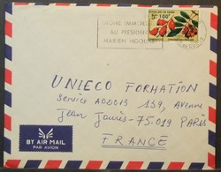 Congo - Cover To France 1974 Fruits Overprinted Drought 100F Solo - FDC