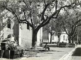 Grd For-ref Z615- Var -  Brue Auriac - La Fontaine Et La Place De L Eglise - - France