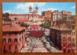 ROMA Piazza Di Spagna Trinità Dei Monti  Cartolina  Viaggiata - Places & Squares