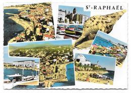 83 - Souvenir De SAINT-RAPHAEL - Multivues Avec Coquillage - Ed. ABEILLE-CARTES N° 4.178 CC - Cpsm Colorisée - Saint-Raphaël