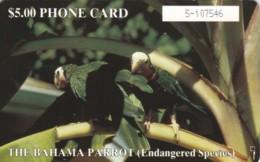 PHONE CARD BAHAMAS (E60.4.3 - Bahama's