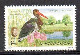 HONGRIE. N°3714 De 2000. Cigogne. - Storks & Long-legged Wading Birds