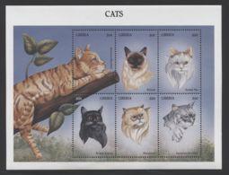 Liberia - 1999 Cats Kleinbogen MNH__(THB-2107) - Liberia