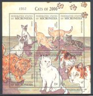 Micronesia - 2000 Cats Kleinbogen MNH__(THB-999) - Mikronesien