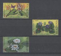 Moldova - 2008 Endangered Flora MNH__(TH-12610) - Moldawien (Moldau)