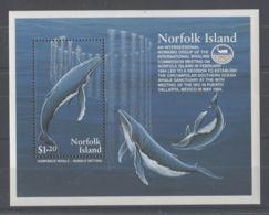 Norfolk Island - 1995 International Whale Commission Block MNH__(TH-11547) - Norfolk Island