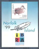 Norfolk Island - 1999 Local Ducks Block MNH__(TH-3695) - Norfolk Island