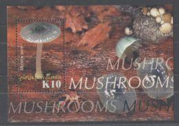 Papua New Guinea - 2005 Mushrooms Block MNH__(TH-8230) - Papua-Neuguinea