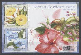 Pitcairn Islands - 2000 THE STAMP SHOW 2000 Block MNH__(TH-18203) - Briefmarken