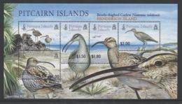 Pitcairn Islands - 2005 Bristle Curlew Block MNH__(THB-4384) - Briefmarken