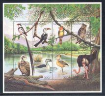 Tanzania - 1991 Birds Kleinbogen (1) MNH__(THB-517) - Tansania (1964-...)