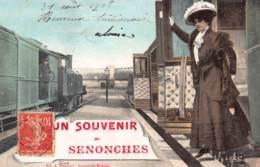 28 - EURE ET LOIR - SENONCHES - 10115 - Carte Fantaisie Ancienne - France