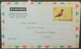 Ghana - Stamped Stationery Aerogramme 1960 Bird - Ghana (1957-...)