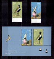 2019 Ireland Europa CEPT National Bird Set + MS MNH** MiNr. 2302 - 2303 (Block 109) European Golden Plover Seagull - Ungebraucht