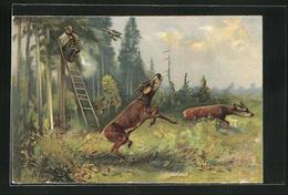 AK Jäger Feuert Von Einer Aussicht Aus Auf Rehe - Hunting