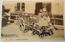 BRUXELLES Laitière Flamande (avec Attelage De Chiens) - Old Professions