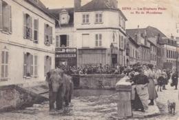 YONNE SENS LES ELEPHANTS PINDER AU RU DE MONDEREAU - Sens