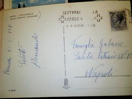 ROMA CAPANNELLE SCUOLE CENTRALI ANTINCENDI 1958 VIGILI DEL FUOCO POMPIERI  V1958 TARGHETTA CROCE ROSSA SETTIMANA HP9035 - Santé & Hôpitaux