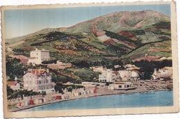 Dépt 66 - BANYULS - CPSM 9 X 14 Cm - Vue Panoramique - (1951) - Banyuls Sur Mer