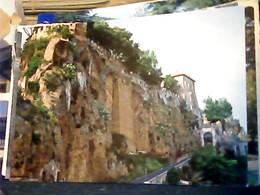CERI CERVETERI SALITA AL CASTELLO N1985 HP9045 - Autres Villes