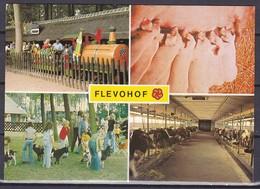 1985 Flevohof In Kleur Gelopen Naar Eindhoven - Unclassified