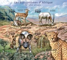Togo 2011 Fauna  African Sahel,  Antelope , Cheeath - Togo (1960-...)