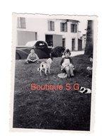 Photo Enfant Fille Garçon Chien Extérieur Voiture Automobile 8,5x6 Cm - Persone Anonimi