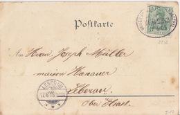 CP Gruss (aus Weiler) Obl Ambulant (Weiler-Schlettsd-Weilerthal, Zug 2232) Sur TP 5pf Le 17/6/05 Pour Leberau - Railway Post