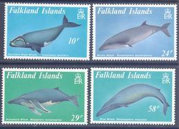 1989. Falkland Islands, Whales, 4v, Mint/** - Islas Malvinas