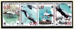 Bosnia & Herzegovina 1998 White Stork WWF Strip Of 4 MNH - Bosnien-Herzegowina
