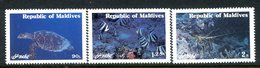 Maldive Islands 1980 Marine Life Set HM (SG 909-911) - Maldives (1965-...)