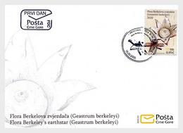 Montenegro - Postfris / MNH - FDC Flora 2020 - Montenegro