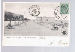 MALTA  Promenade Sliema Char- Id- Dud 1905 Old Postcard - Malta
