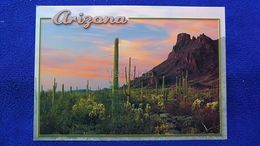 Arizona Sonoran Desert USA - Autres