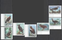 J1022 MALDIVES BIRDS OF PREY HAWKS EAGLES FAUNA 1SET MNH - Aigles & Rapaces Diurnes