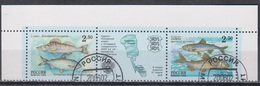 Russia 2000 Fauna Fish MiNr.861-62 - Used Stamps