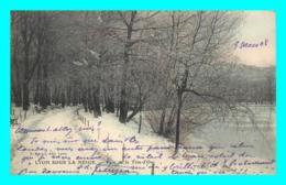 A762 / 427 69 - LYON Sous La Neige Parc De La Tete D'Or - Lyon