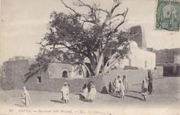 Tunis - Nefta - Marabout Sidi-Messoud - Túnez