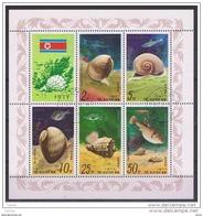 COREA  DEL  NORD:  1978  BL/FG. CONCHIGLIE  E  PESCI  -  S. CPL. 5  VAL. US. -  YV/TELL. 1467/70+P.A.4 - Corée Du Nord